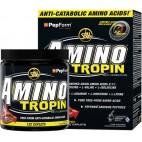 Aminotropin (132 капсулы)